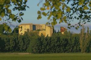 Le château de Confoux